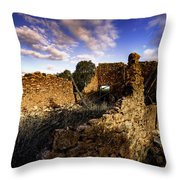 Once Was Barn Throw Pillow