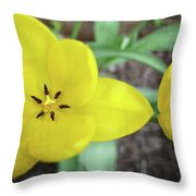 One And A Half Yellow Tulips Throw Pillow by Michelle Calkins