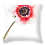 One Anemone Throw Pillow