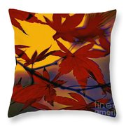 One Autumn Evening By Kaye Menner Throw Pillow