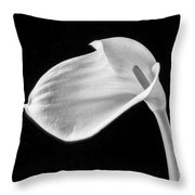 One Beautiful Calla Lily In Black And White Throw Pillow