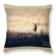 One Cute Deer Throw Pillow