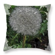 One Dandy Lion Throw Pillow