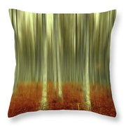 One Day Like This Throw Pillow