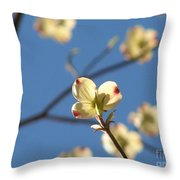 One Dogwood Blooms Throw Pillow