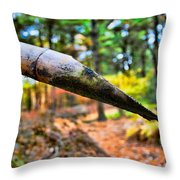One Drop Amidst The Drought Throw Pillow