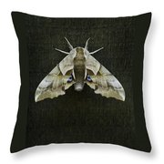 One Eyed Sphinx Moth Throw Pillow