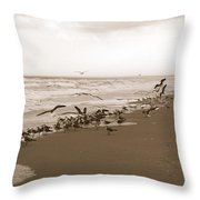 One Flap Of A Seagull Throw Pillow
