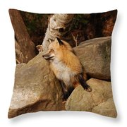 One Foot At A Time Throw Pillow