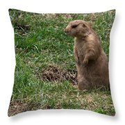 One Foot Forward Throw Pillow