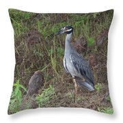 One Foot Tall Throw Pillow