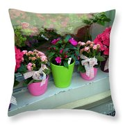 One For You - One For Me Throw Pillow