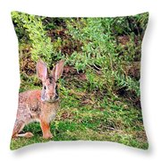 One Hop From The Warren Throw Pillow