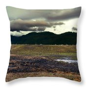 One Horse Town Throw Pillow