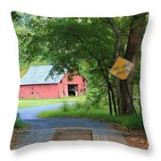 One Lane Bridge Throw Pillow