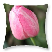 One Lovely Pink Tulip Throw Pillow