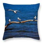 One More Makes Four Throw Pillow by Amanda Struz