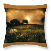 one morning in Clare Throw Pillow