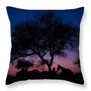 Evening In Rajasthan Throw Pillow