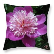 One Of My Favorite Flowers Throw Pillow