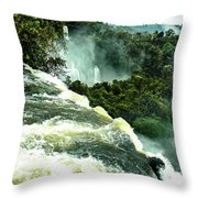 One Of Nature's Beauties Throw Pillow
