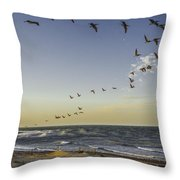 One Pelican Two Pelican Three Pelican Throw Pillow