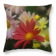 One Red One Throw Pillow
