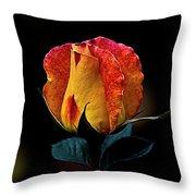 One Rose Throw Pillow