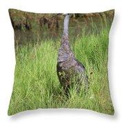 One Sandhill In Marsh Throw Pillow