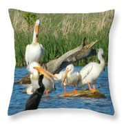 One Sassy Pelican And Friends, West Central Minnesota Throw Pillow