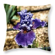 One Sole Iris In Bloom Throw Pillow