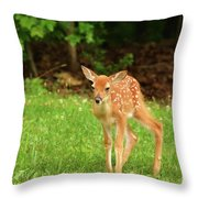 One Step At A Time. Throw Pillow