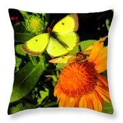 One Sulpher In Flight Throw Pillow