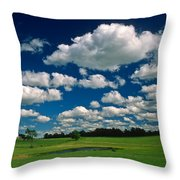 One Summer Day Throw Pillow