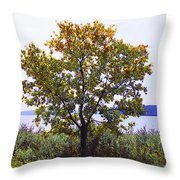One Tree Hudson River View Throw Pillow