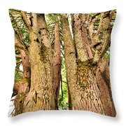 One Tree Six Trunks Throw Pillow