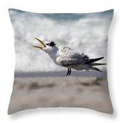 One Upset Royal Tern Throw Pillow