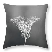 One Vision Throw Pillow