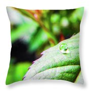 One Waterdrop Throw Pillow