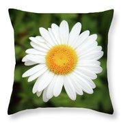 One White Daisy Throw Pillow