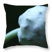 Onion Skin Throw Pillow