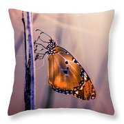 Only Beauty Remains Throw Pillow