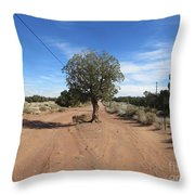 Only In Arizona Throw Pillow