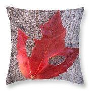 Only One Leaf To Live Throw Pillow