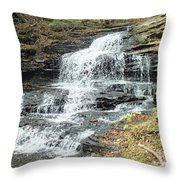 Onondaga 6 - Ricketts Glen Throw Pillow