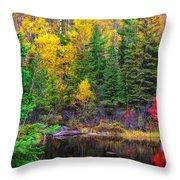 Ontario Tarn Throw Pillow