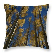 Onward Toward The Sky Throw Pillow