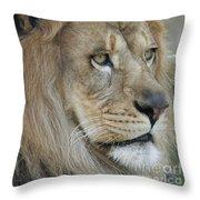 Onyo #25 Throw Pillow