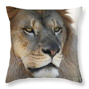 Onyo #3 Throw Pillow