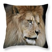 Onyo #4 V2 Throw Pillow